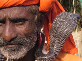 Pakistan – the snake is my friend