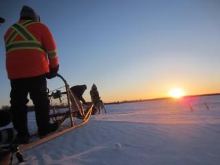 Ice Roads – dog sledge
