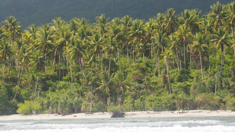 Coast of Ternate